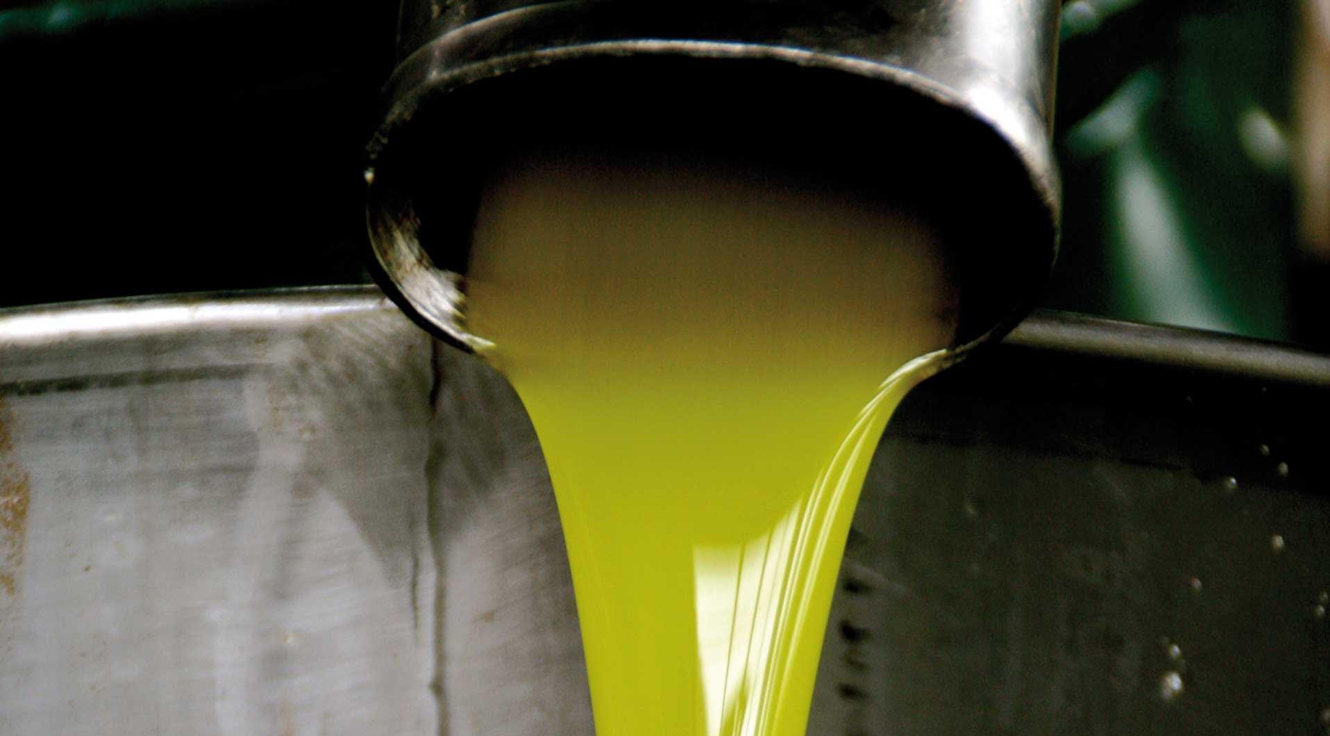 ABC dell'olio